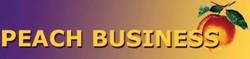 Sagal Group Peach-Business-Logo Links
